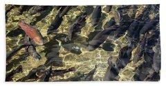Fish Hatchery Beach Towel