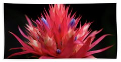 Beach Towel featuring the photograph Flaming Flower by John Rodrigues