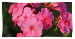 Flaming Pink Phlox Beach Sheet