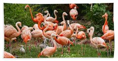 Beach Towel featuring the photograph Flamingos Outdoors by Top Wallpapers