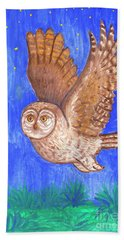 Flying Owl Beach Sheet