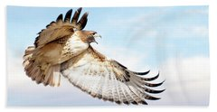 Flying Red-tailed Hawk Beach Towel