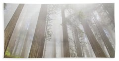 Fog In The Redwoods Beach Towel