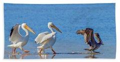 Follow The Leader Beach Sheet