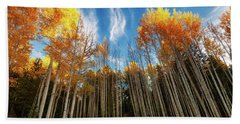 Beach Towel featuring the photograph Follow The Yellow Leaf Road by Rick Furmanek