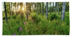 Beach Towel featuring the photograph Forest Growth Alaska by Nathan Bush