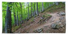 Beach Towel featuring the photograph Forest On Balkan Mountain, Bulgaria by Milan Ljubisavljevic