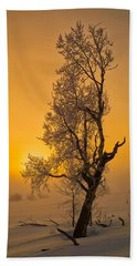 Frosted Tree Beach Towel