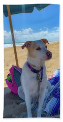 Beach Towel featuring the photograph Fun Doggie Day At The Beach by Lora J Wilson