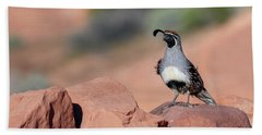 Gambels Quail One Beach Towel
