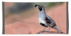 Gambels Quail Two Beach Towel