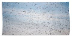 Geese In The Flyway Beach Towel