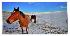Beach Towel featuring the photograph Geldings In The Snow by David Patterson
