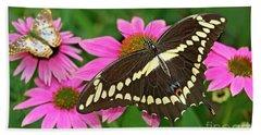 Giant Swallowtail Papilo Cresphontes Beach Towel