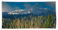 Gold Grass Snowy Peak Beach Towel