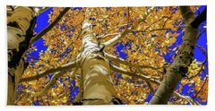Golden Aspens In Grand Canyon Beach Towel