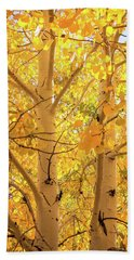 Golden Aspens In Grand Canyon, Vertical Beach Towel