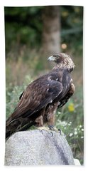 Golden Eagle On Rock 92515 Beach Sheet