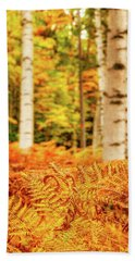 Beach Towel featuring the photograph Golden Ferns In The Birch Glade by Jeff Sinon