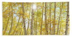 Beach Towel featuring the photograph Golden Sunshine On An Autumn Day by James BO Insogna