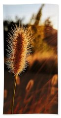 Golden Wildgrass Beach Sheet