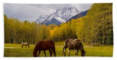 Beach Towel featuring the photograph Grazing In Aspen by Jacqueline Faust