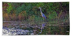 Great Blue Heron In Autumn Beach Towel