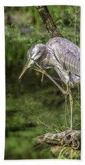 Great Blue Heron Itch Beach Sheet
