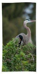 Great Blue Heron Portrait Beach Sheet