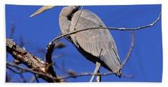 Great Blue Heron Strikes A Pose Beach Sheet