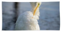 Beach Towel featuring the photograph Great Egret - Preening Time by Ricky L Jones
