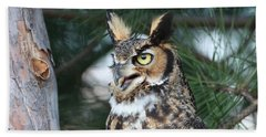 Great Horned Owl 5151801 Beach Sheet