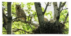 Great Horned Owl And Babies Beach Towel