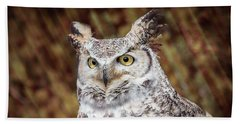 Great Horned Owl Portrait Beach Sheet