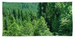 Green Conifer Forest On Steep Hillside  Beach Towel