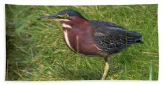 Beach Towel featuring the photograph Green Heron Up Close by Ricky L Jones