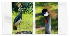 Grey Crowned Crane Gulf Shores Al Collage 10 Diptych Beach Sheet
