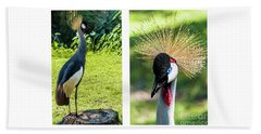 Grey Crowned Crane Gulf Shores Al Collage 8 Diptych Beach Sheet
