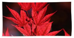 Guardsman Red Japanese Maple Leaves Beach Towel