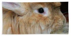 Hairy Rabbit Beach Sheet