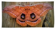 Halloween Moth Beach Towel
