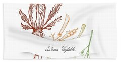 Hand Drawn Autumn Vegetables Of Chicory, Dill And Kale Beach Towel