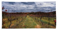 Beach Towel featuring the photograph Harvested Grapevines by Robert FERD Frank