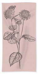 Helianthus Blush Pink Flower Beach Towel