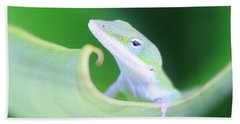 Hello, Anole. 2 Beach Towel