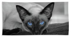 Hey There Blue Eyes - Siamese Cat Beach Towel