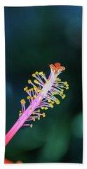 Hibiscus' Pistil Beach Towel