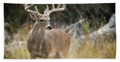 Hill Country Whitetail Beach Towel