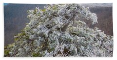 Hoarfrost On Trees Beach Towel
