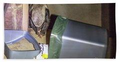 Honey Badger Of South Africa Beach Towel